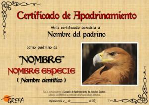 Certificado padrino