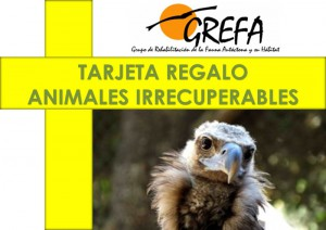 Tarjeta Regalo ANIMALES IRRECUPERABLES Anverso