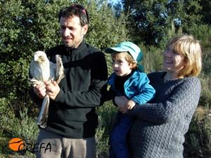 Liberación del águila calzada Sam con sus padrinos