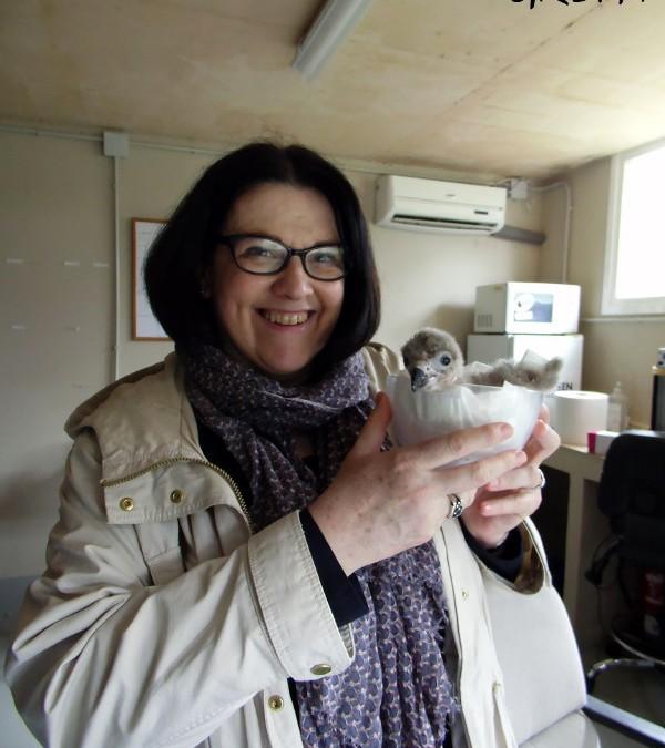Nos visitan los padrinos de parejas reproductoras y de animales irrecuperables